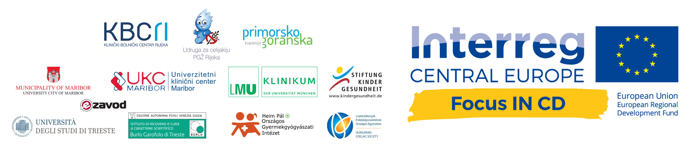 Logo Projekt Focus IN CD Hrvatski